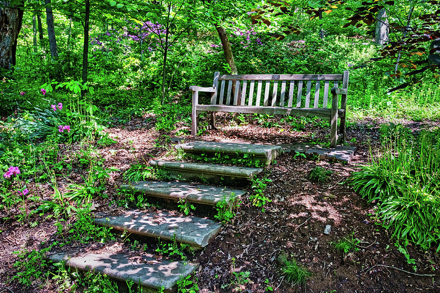Arboretum Bench - Washington by Stuart Litoff