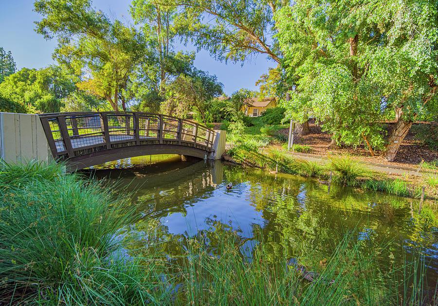 Arboretum Bridge by Jonathan Hansen