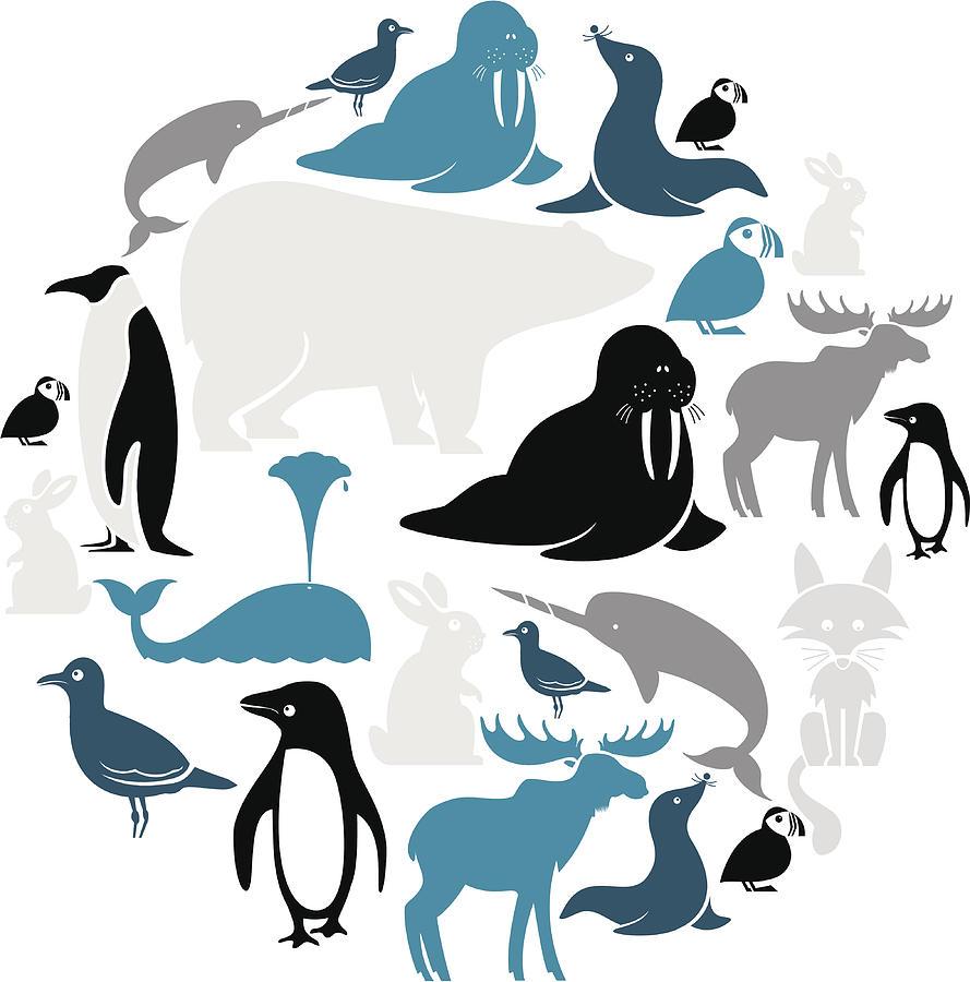 Arctic Animals Icon Set Digital Art by Theresatibbetts