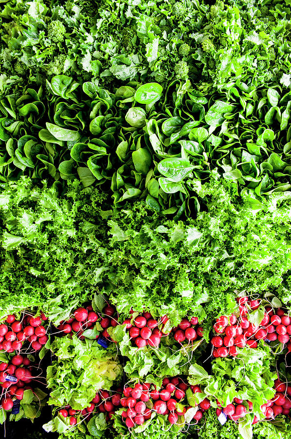 Ariel View Of Salad Leaves And Radishes Photograph by Liam Bailey