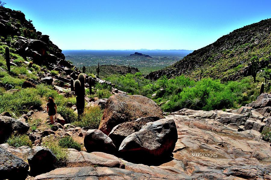 Arizona Desert Hiking by Susie Loechler