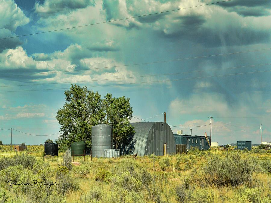 Arizona Homestead by Paulette B Wright