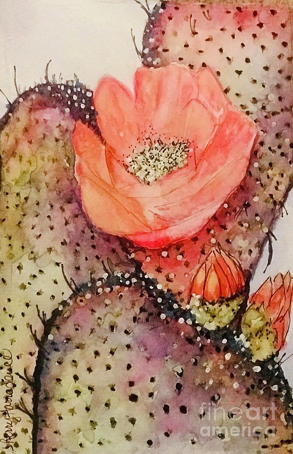 Arizona Is Blooming  by Sherry Harradence