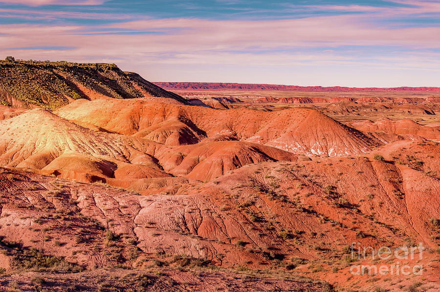 Arizona Painted Desert #1 by Blake Webster
