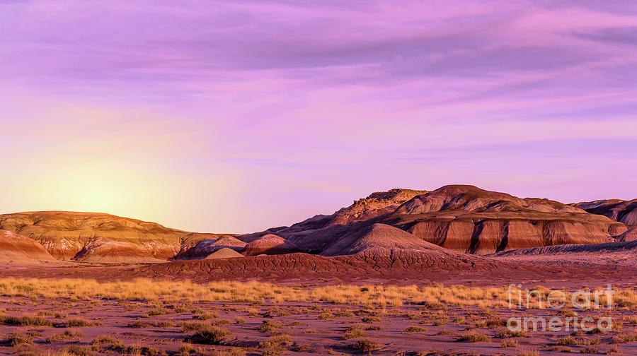 Arizona Painted Desert #3 by Blake Webster