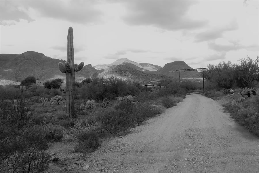 Arizona Ranch Entrance by Bill Tomsa