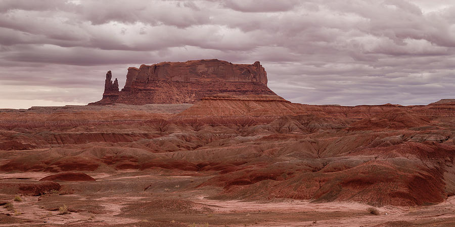Panoramic Photograph - Arizona Red Clay Painted Desert Panoramic View by James BO Insogna