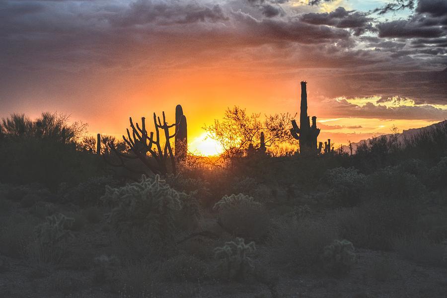 Arizona Sun Orb and Desert by Chance Kafka