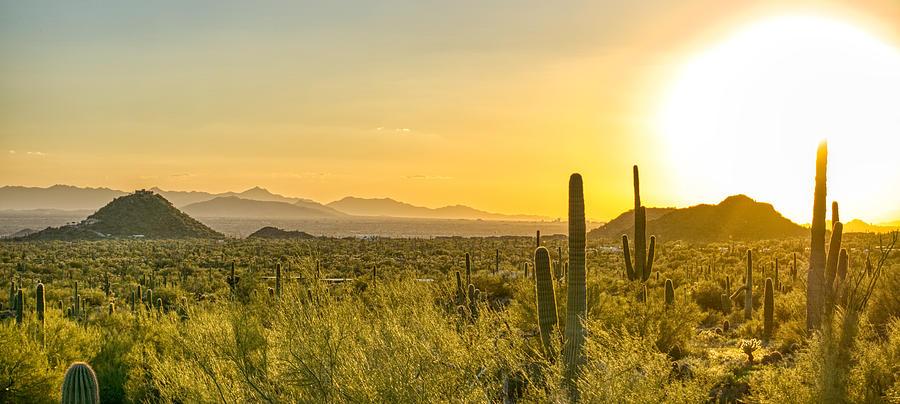 Arizona Sunset Paradise by Anthony Giammarino