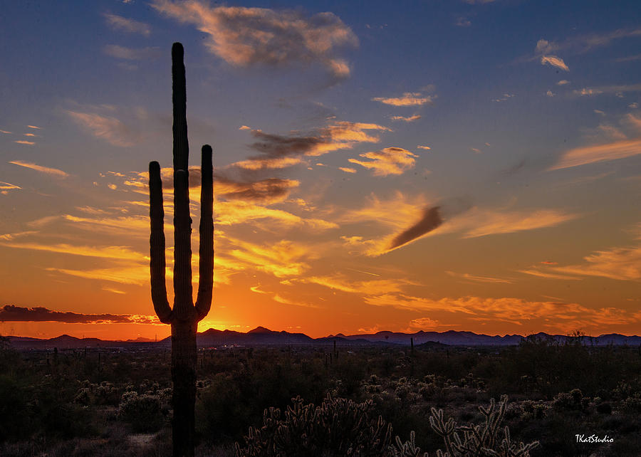 Arizona Sunset by Tim Kathka