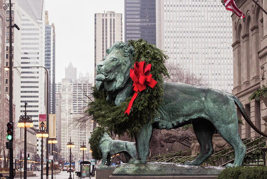 Art Institute of Chicago by Amanda Rimmer