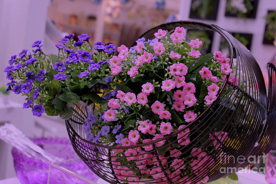 Artificial Flowers In Basket Photograph by Bellartnella- Nellabernardi