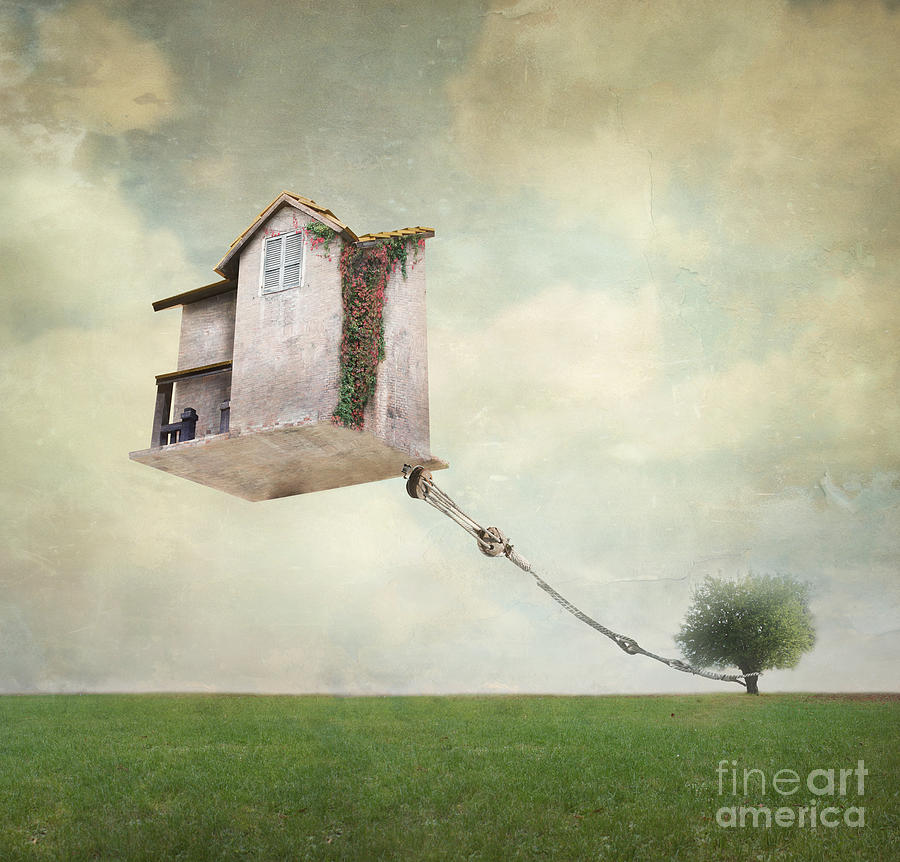 Flight Photograph - Artistic Image Representing An House by Valentina Photos