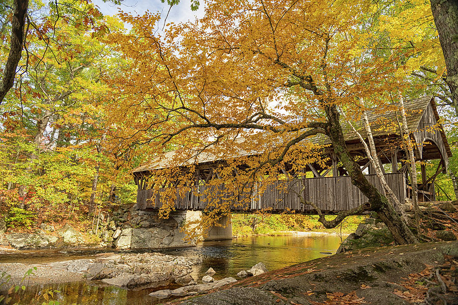 Covered Bridge Photograph - Artists Covered Bridge by Bob Doucette