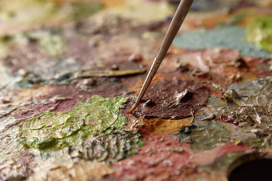 Artists Palette Photograph by Lisa Stirling
