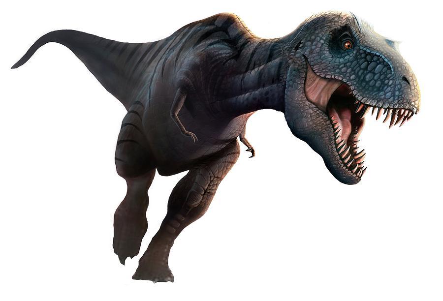 Artwork Of A Tyrannosaurus Rex Running Digital Art by Mark Garlick