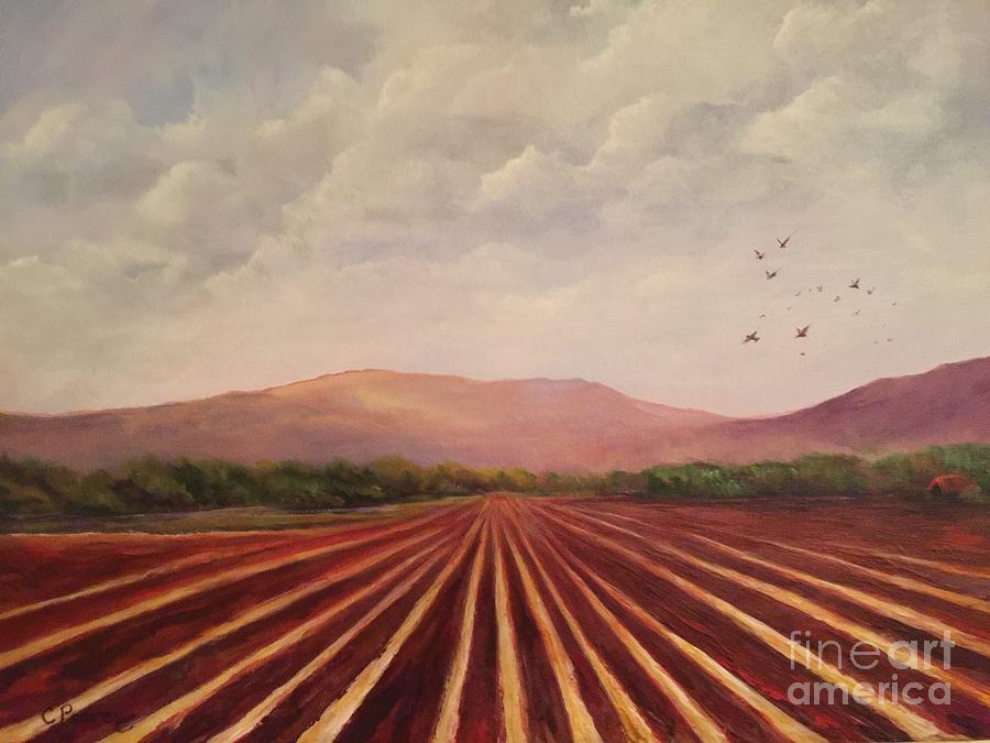 As the Crow Flies by Connie Pearce