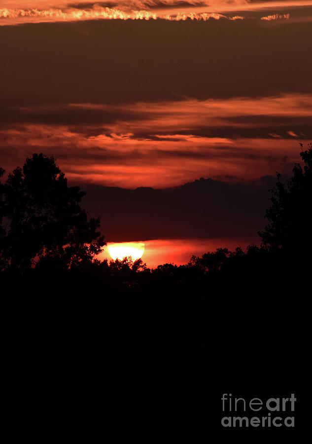 As the Sun Sets Three by Patti Whitten