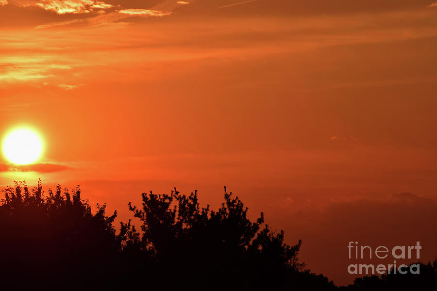 As the Sun Sets Two by Patti Whitten