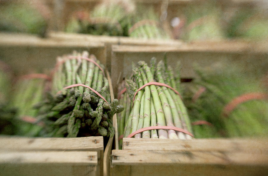 Asparagus In French Market Photograph by Paul Grand Image