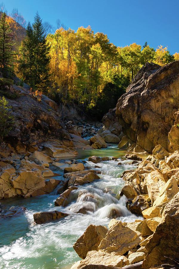 Aspen Mountain Stream Photograph
