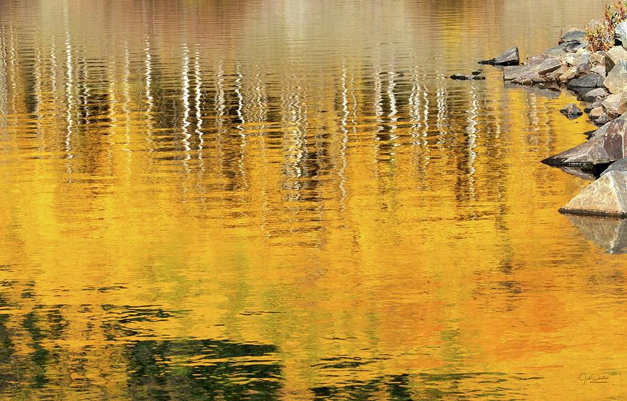Aspen Reflections Abstract by Judi Dressler