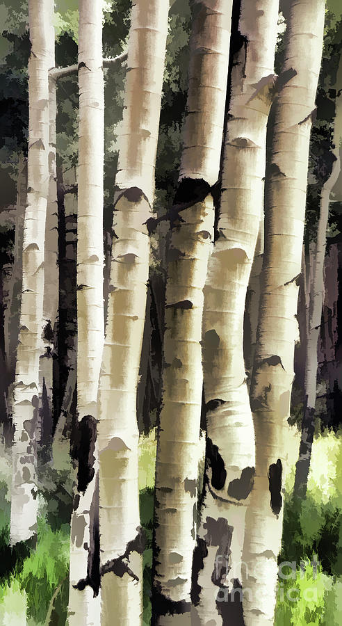 Aspen Tree Painting by Donna Greene