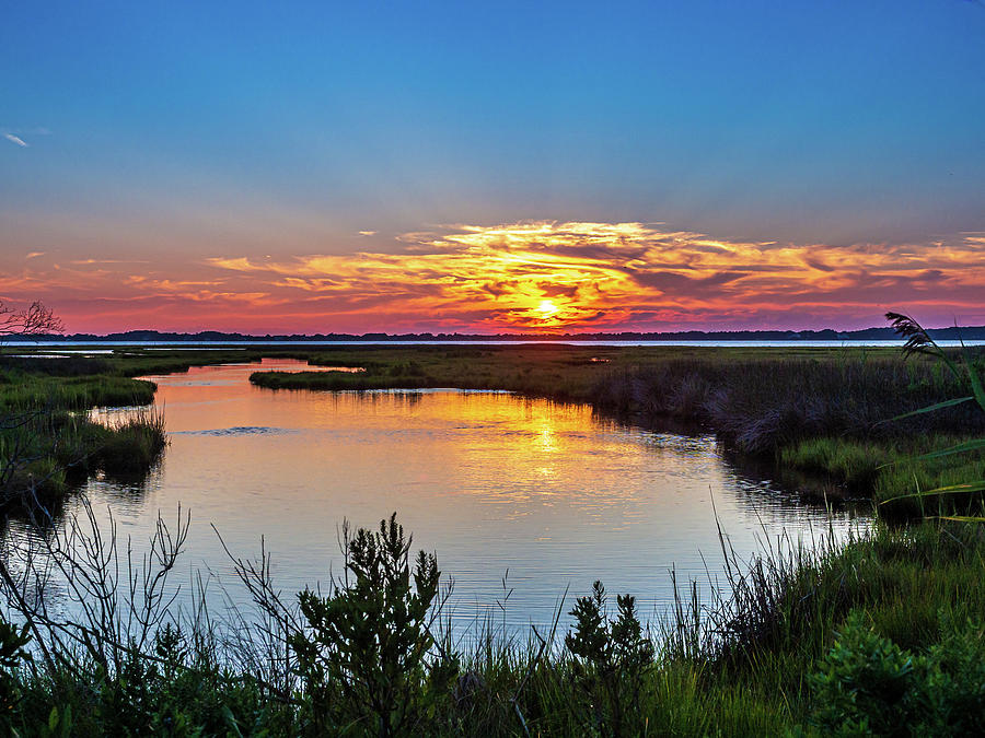 Assateague Island Sunset by Louis Dallara