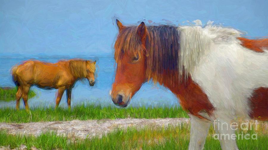 Assateague Pony #1 by Susan Lafleur