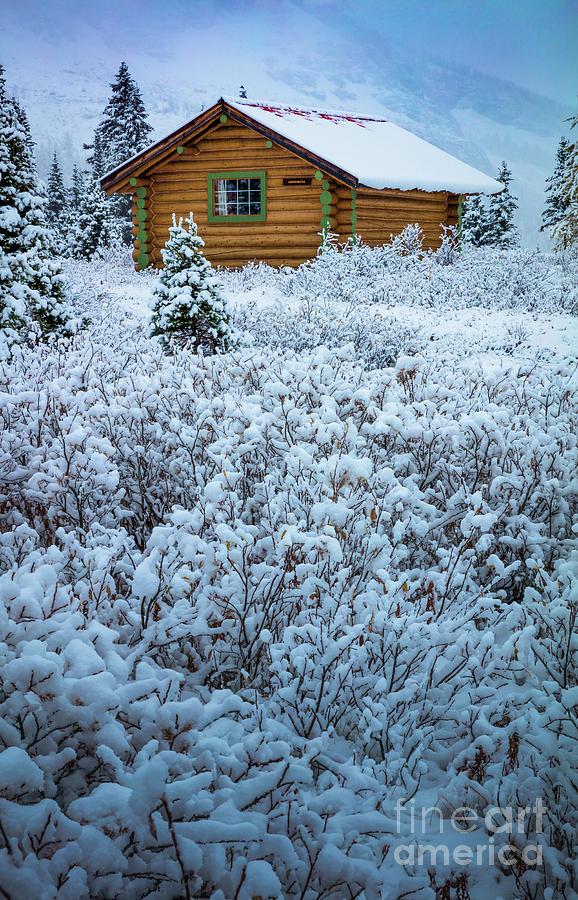 Bc Photograph - Assiniboine Hut by Inge Johnsson