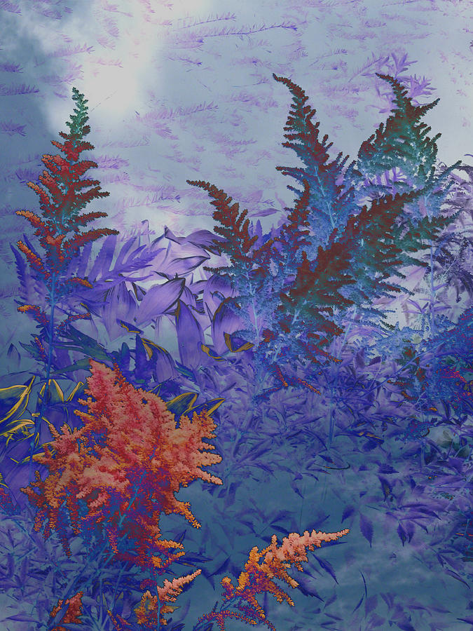 Astilbe Abstract by Michael McBrayer