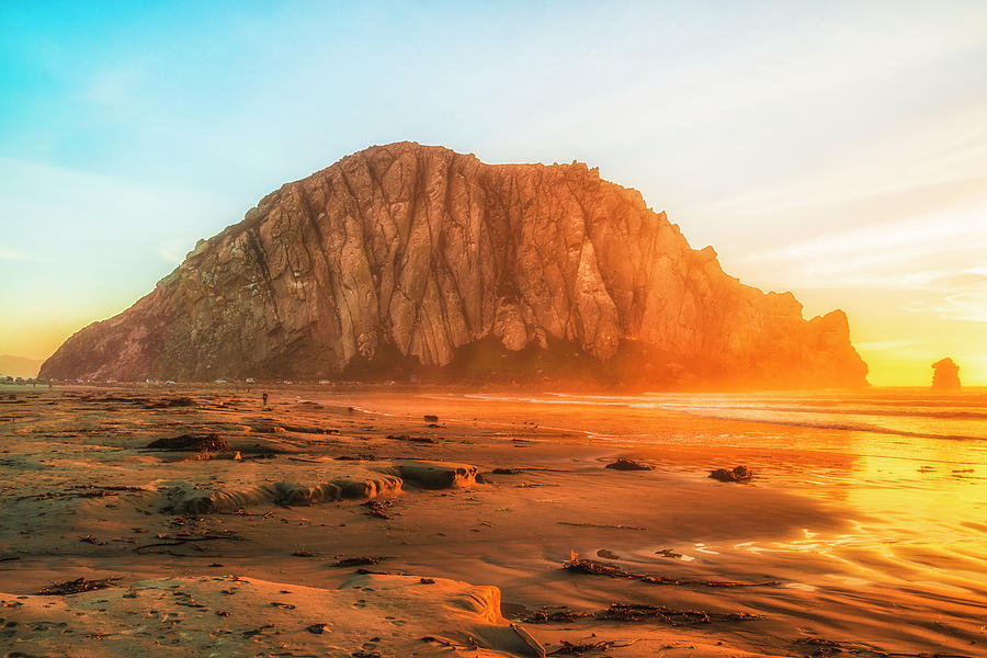 California Photograph - At The Beach by Fernando Margolles