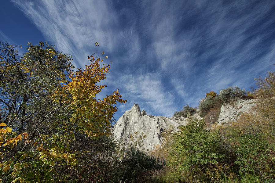 At the Top - Scarborough Bluffs - Ontario, Canada by Spencer Bush