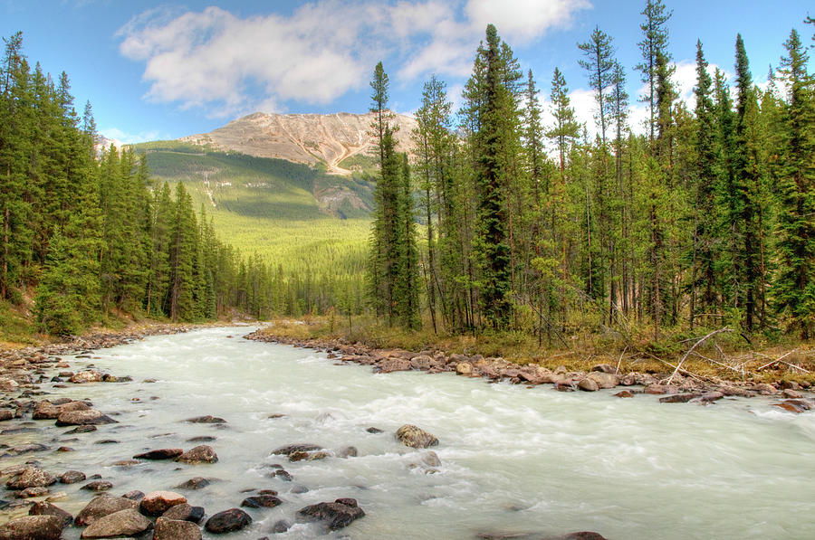 Athabasca River, Jasper National Park Photograph by Wildroze
