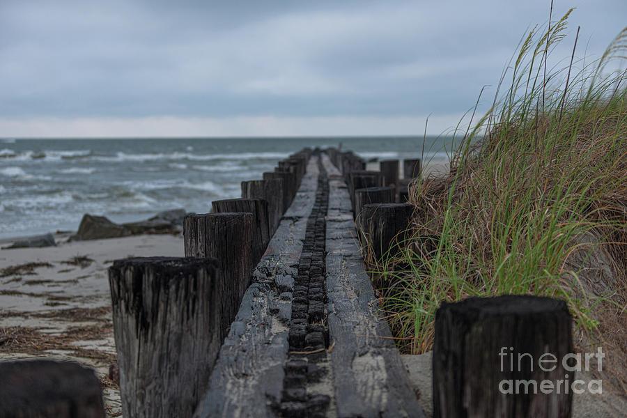 Atlantic Ocean - Salt Life by Dale Powell