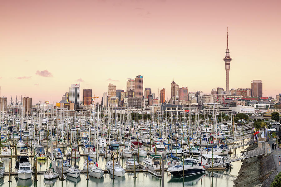 Auckland City And Harbour At Sunset Photograph by Matteo Colombo