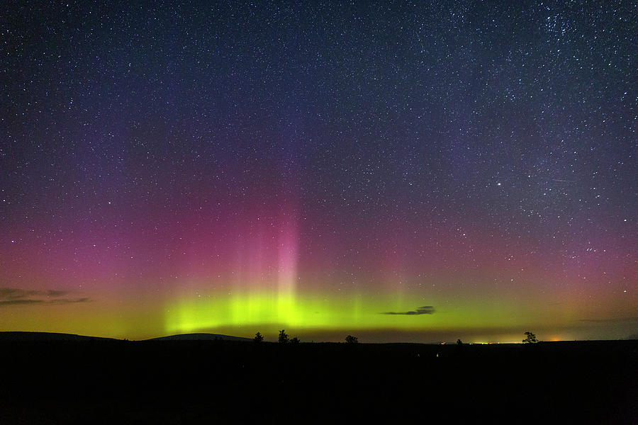 Lights Photograph - August Aurora by Cat Connor