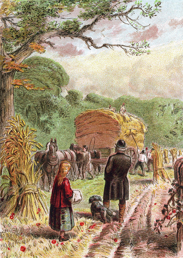 August - Bringing In The Harvest Digital Art by Whitemay