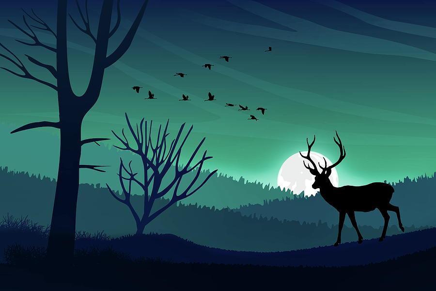 Aurora Borealis Sky and Wildlife  by Andrea Kollo