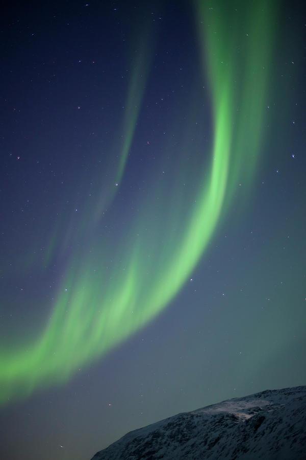 Aurora Borealis, Tromso Photograph by Antonyspencer