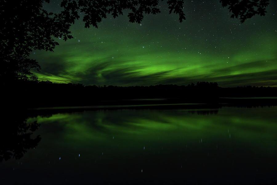 Aurora Under The Oak by Dale Kauzlaric
