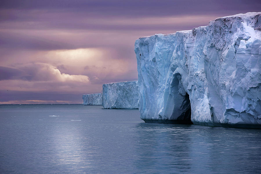 Austfonna Ice Cap Photograph by Chase Dekker Wild-life Images
