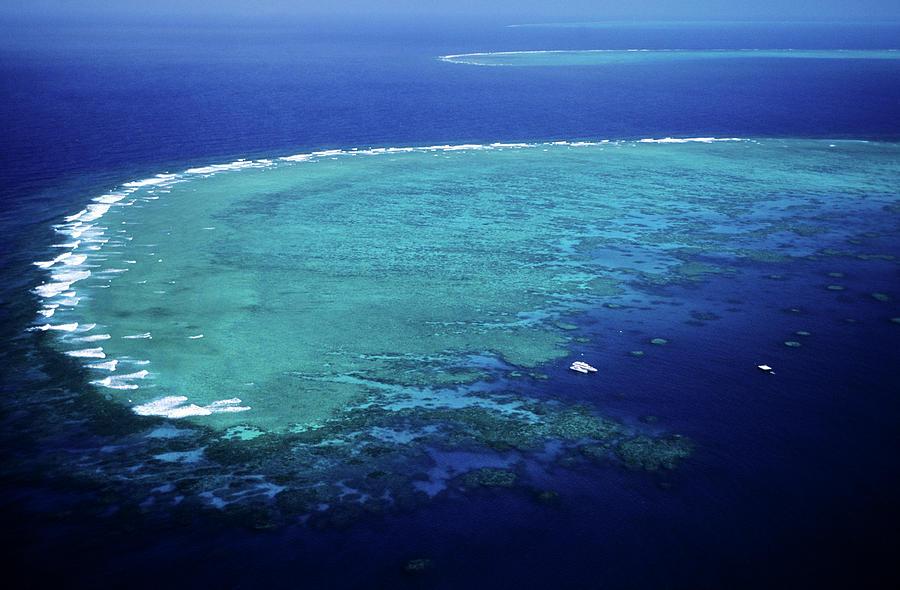 Australia, Queensland, Great Barrier Photograph by Gardel Bertrand / Hemis.fr