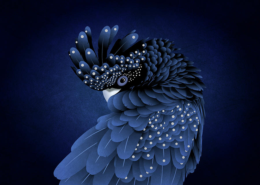 Australian Black Cockatoo Portrait by Debi Dalio