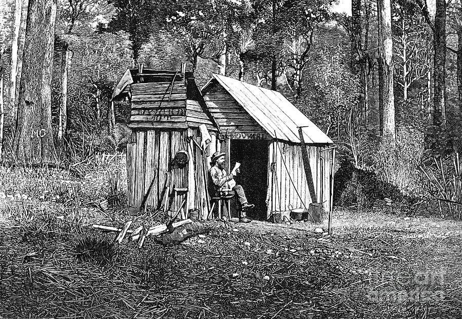 Camp Photograph - Australian Pioneer Camp by Collection Abecasis/science Photo Library