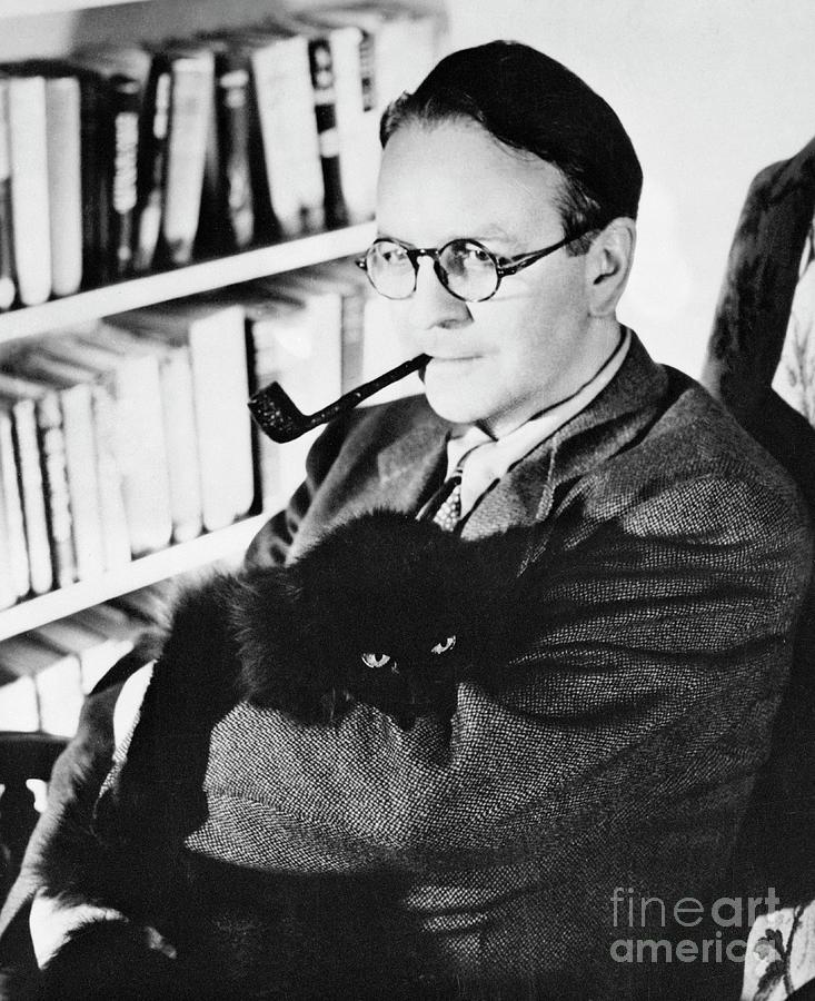 Author Raymond Chandler In His Study Photograph by Bettmann