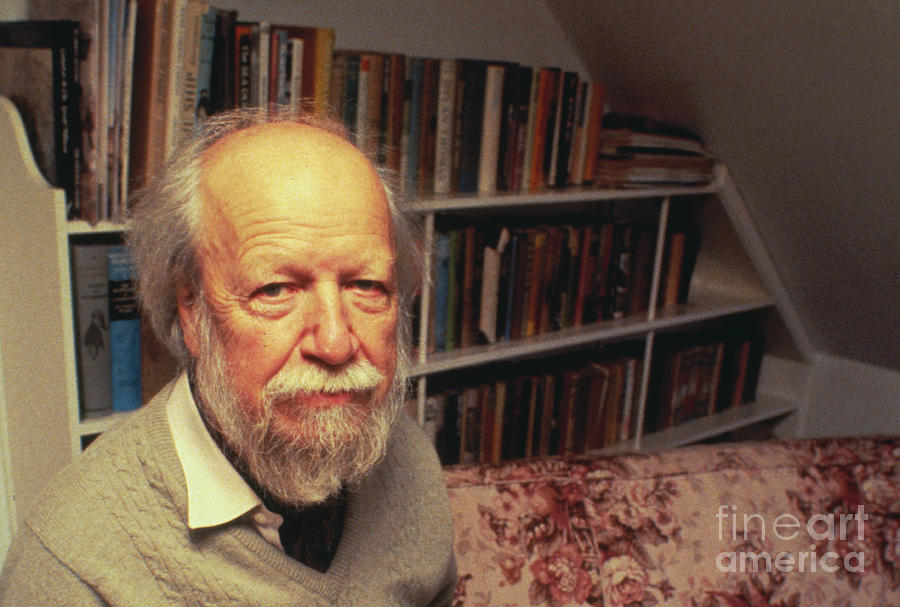 Author William Golding In Library Photograph by Bettmann