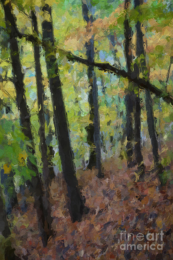 Forest Painting - Autumn Afternoon by David Boudreau