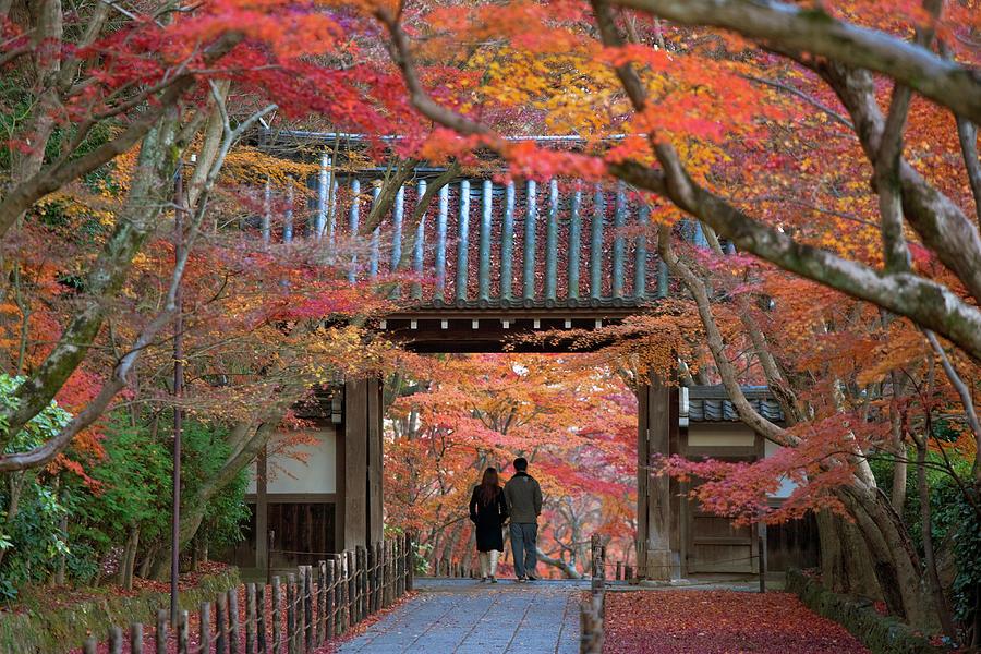 Autumn At Komyoji Temple In Kyoto, Japan Photograph by B. Tanaka