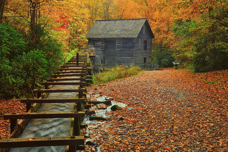 Autumn at Mingus Mill by Greg Norrell